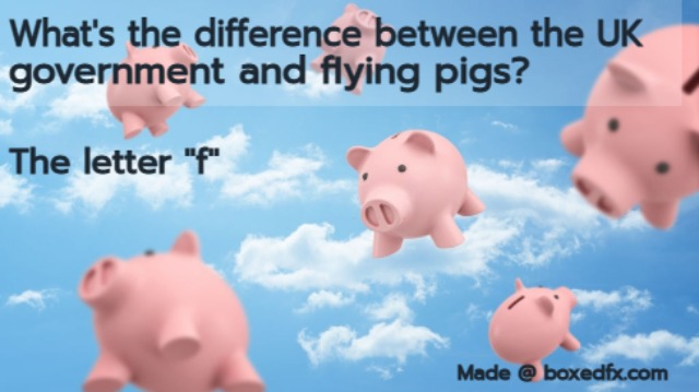 Funny UK political meme featuring flying pigs with the caption: 'What's the difference between K politicians and flying pigs? The letter F'