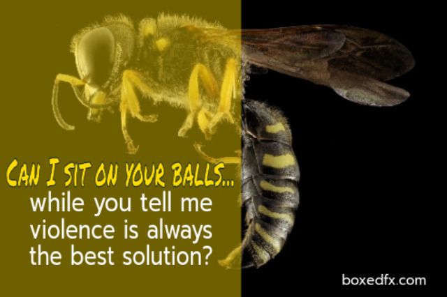 Dragstar example meme showing a wasp on a blackground. The caption reads: 'Can I sit on your balls while you tell me violence is the best solution?'