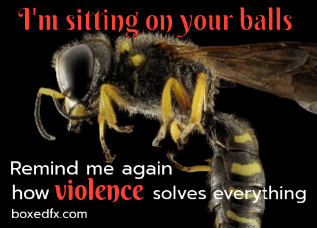 Dragstar example meme showing a wasp on a blackground. The caption reads: 'I am sitting on your balls. Remind me again how violence solves everything.'