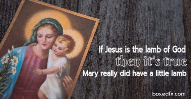 May and baby Jesus Twitter meme with the caption 'If Jesus is the lamb of God, then Mary had a little lamb'
